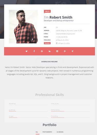 select one of our professional online cv templates - On Line Cv